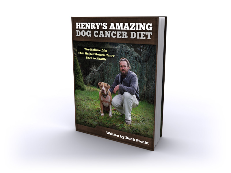 Dog Cancer Diet eBook